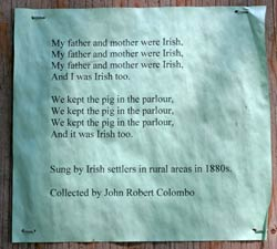 Song of Irish Settlers